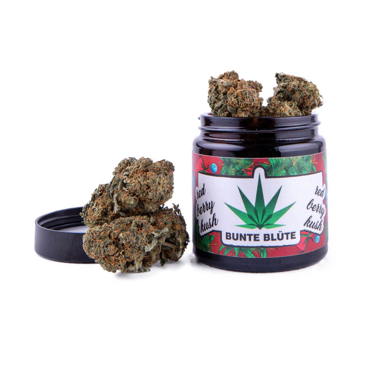 bunte-bluete-cbd-cannabis-red-berry-kush-glas-knolle-buds-5gramm
